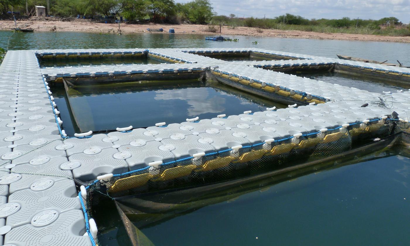 tanque-de-piscicultura-aquicultura-pierplas-flutuante-ntc-float-4.jpg