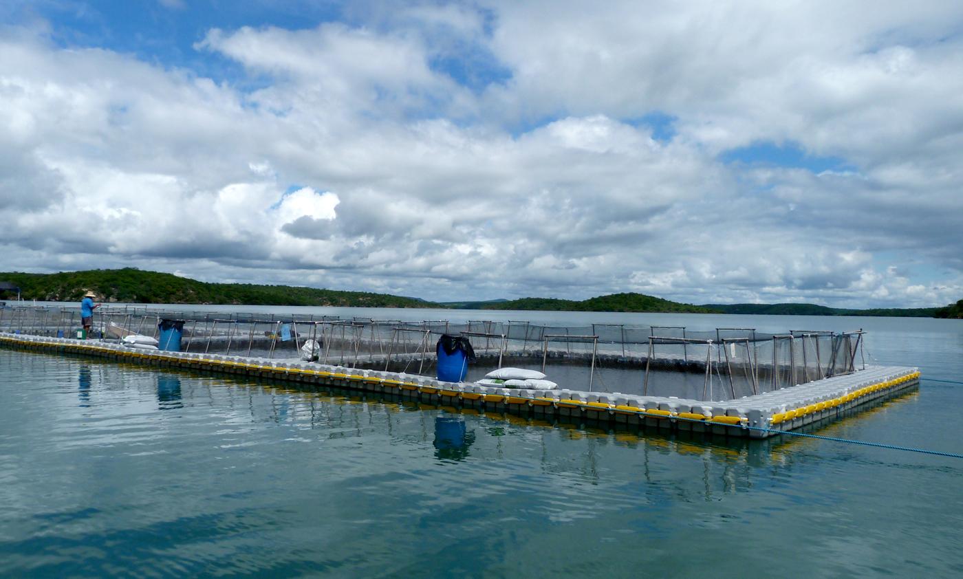 tanque-de-piscicultura-aquicultura-pierplas-flutuante-ntc-float-6.jpg