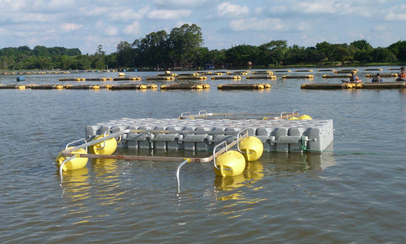 tanque-de-piscicultura-aquicultura-pierplas-flutuante-ntc-float-7.jpg